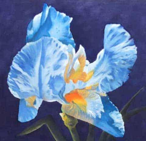 Close Focus Flower Painting Online Course